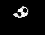 Het Supportersforum van en voor voetbalsupporters